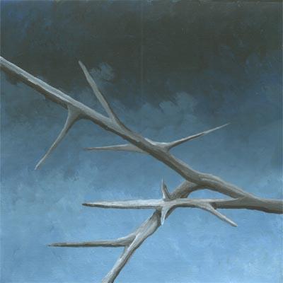 thorns 018-lg