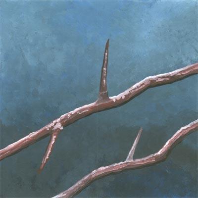 thorns 019-lg